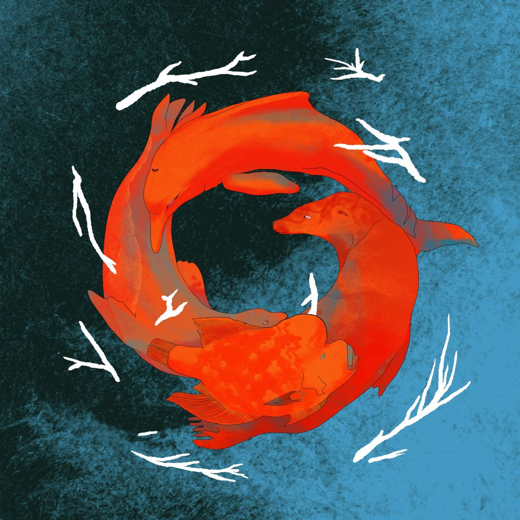Ominira_Sea Lion Podcast_Eric Segura