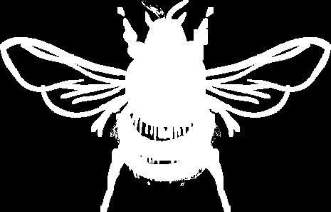 Bombus Danza Néctar Ominira